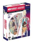 4D Human 32cm Transparent Human Body Anatomy Model