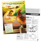 Lifecycle of a Chicken Poster