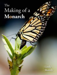 The Making of  a Monarch