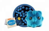 GIANT Microbes-Common Cold