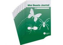 Mini Beasts Journal - Student Resource