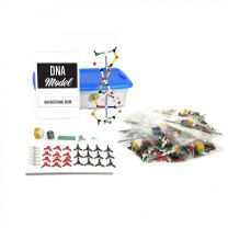 DNA Model Kit, 12 Packet