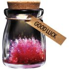 Crystal Garden - Good Luck (Red)