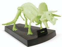 Jurassic Night - Triceratops Skeleton