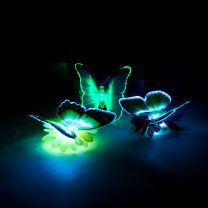 Glowing Optical Fibre Butterfly