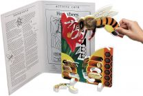 Book Plus Models - Honeybee Lifecycle