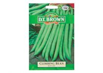 Climbing Bean Vegetable Seeds - Blue Lake