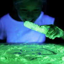 Phosphorescent Powder