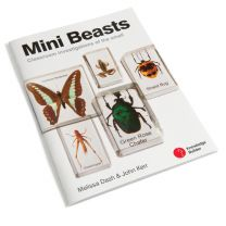 Mini Beasts - Teacher's Guide