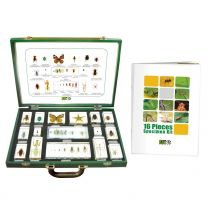 Assorted Specimen Kit, 16 Piece
